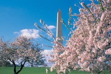 LuxeGetaways | Washington DC - Courtesy Destination DC