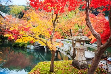 LuxeGetaways - Luxury Travel - Luxury Travel Magazine - Luxe Getaways - Luxury Lifestyle - Digital Travel Magazine - Travel Magazine - Japan - Authentic Travel Experiences at Ryokan - Fall Leaves
