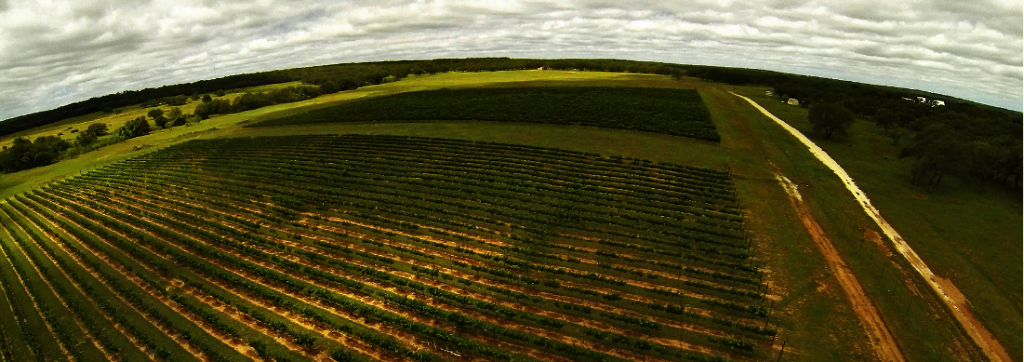 LuxeGetaways   The Vines and Vistas of Texas Hill Country